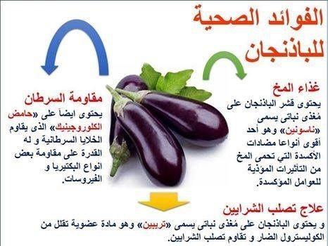 IMG 9968 - فوائد الباذنجان للجسم 5 فوائد مهمة وبعض النصائح لصحة افضل | شبكة عرب مصر
